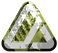 MOUNTAIN LOOK 6 _ CHARTREUSE.png