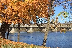bridge fall.jpg