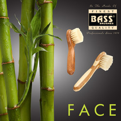Facial Brushes 2