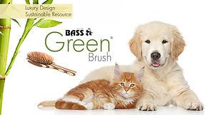 Bass Green Brush PET Twitter.jpg