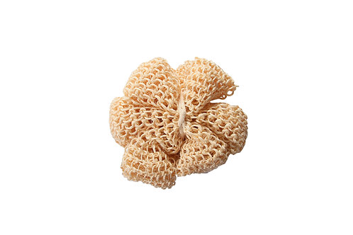 Bass S60  |  Natural Sisal Flower Sponge