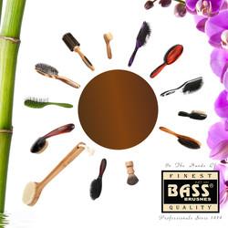 Explore Bass Brushes