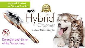The Hybrid Groomer.jpg