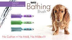 Bathing Brush Tweet.jpg