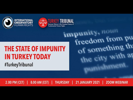 European politicians, experts discuss impunity in Turkey at online event