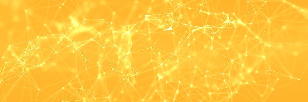Light Network.jpg