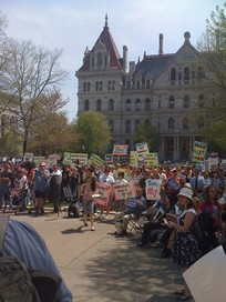 Rallying for marriage equality in Albany
