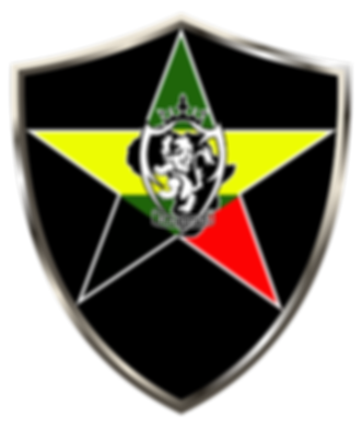 BlackStar_Logo Neat _2018 copy-03.png