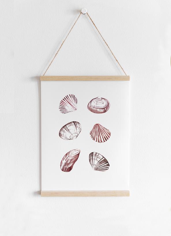 hanged-item-shells.png