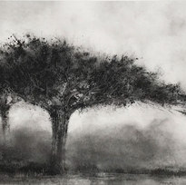 "Spread Powdered charcoal on paper 14 x 22.5"" KP 1058"