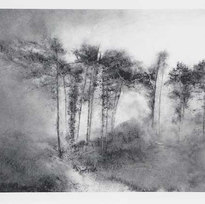 Path Powdered charcoal on paper 17.75 x 25.5""