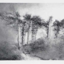 """Path Powdered charcoal on paper 17.75 x 25.5"""""""