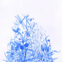 """The Exchange, from Wildflowers Series Blue pencil on mylar 12.25 x 19.75"""""""