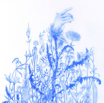 """The Waiting, from Wildflowers Series Blue pencil on mylar 9.25 x 6.5"""""""
