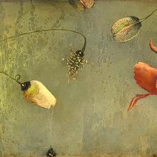 """Arctic Poppies XVI Oil on panel 24 x 60"""" JL 1225"""