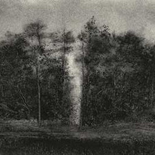 """Gulch Powdered charcoal on paper 15 x 22.5"""""""