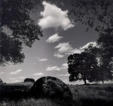 """Whitney Ranch (Negative No. PJ-6-4-12), 1962 Silver gelatin print  Photograph: 10.5 x 11.25"""""""