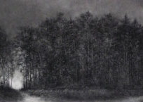 Stand Powdered charcoal on paper 47 x 24.5""