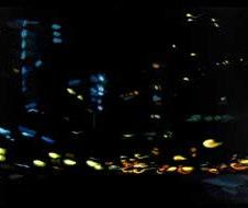 "Night Series No. 42 Acrylic on canvas 18 x 36"" MXM 1001"
