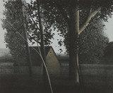 "Dark Trees Lithograph 14 x 17"""
