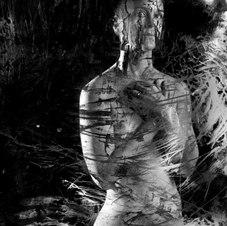 "Untitled 3643 1/10 Silver gelatin print 20 x 24"""
