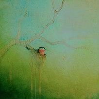 """Hummingbird XX Oil on panel 24 x 24"""""""