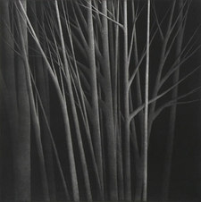 """An Island in the Forest, Ed. 5/70 Mezzotint 19.5 x 19.5"""""""