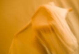 16gold dust.jpg
