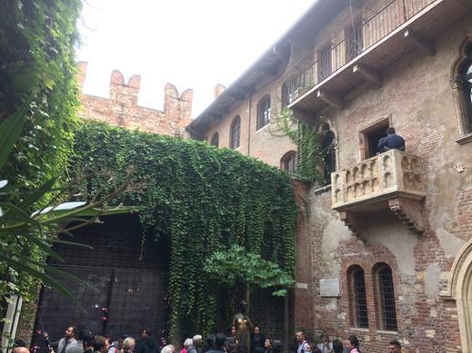 Wine Guide Verona