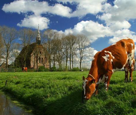 Groningen017.jpg