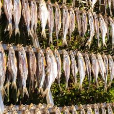 missolitini-lago-di-como-1300x867.jpg