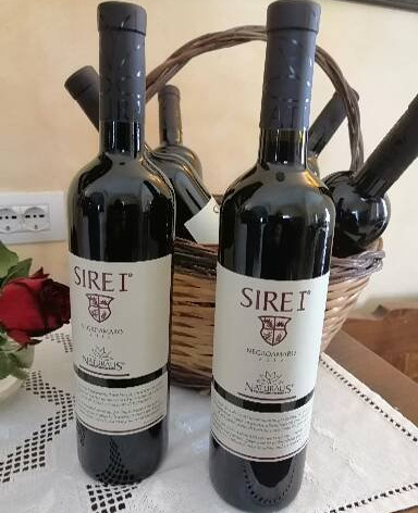 wijnreis Puglia