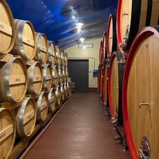 wijnreis Veneto
