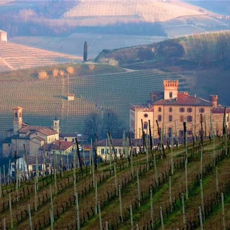 wijnreizen Piemonte