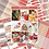 Thumbnail: A Pet's Christmas Sticker Kit
