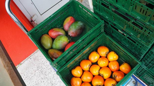 Überschüssige Lebensmittel in Kisten