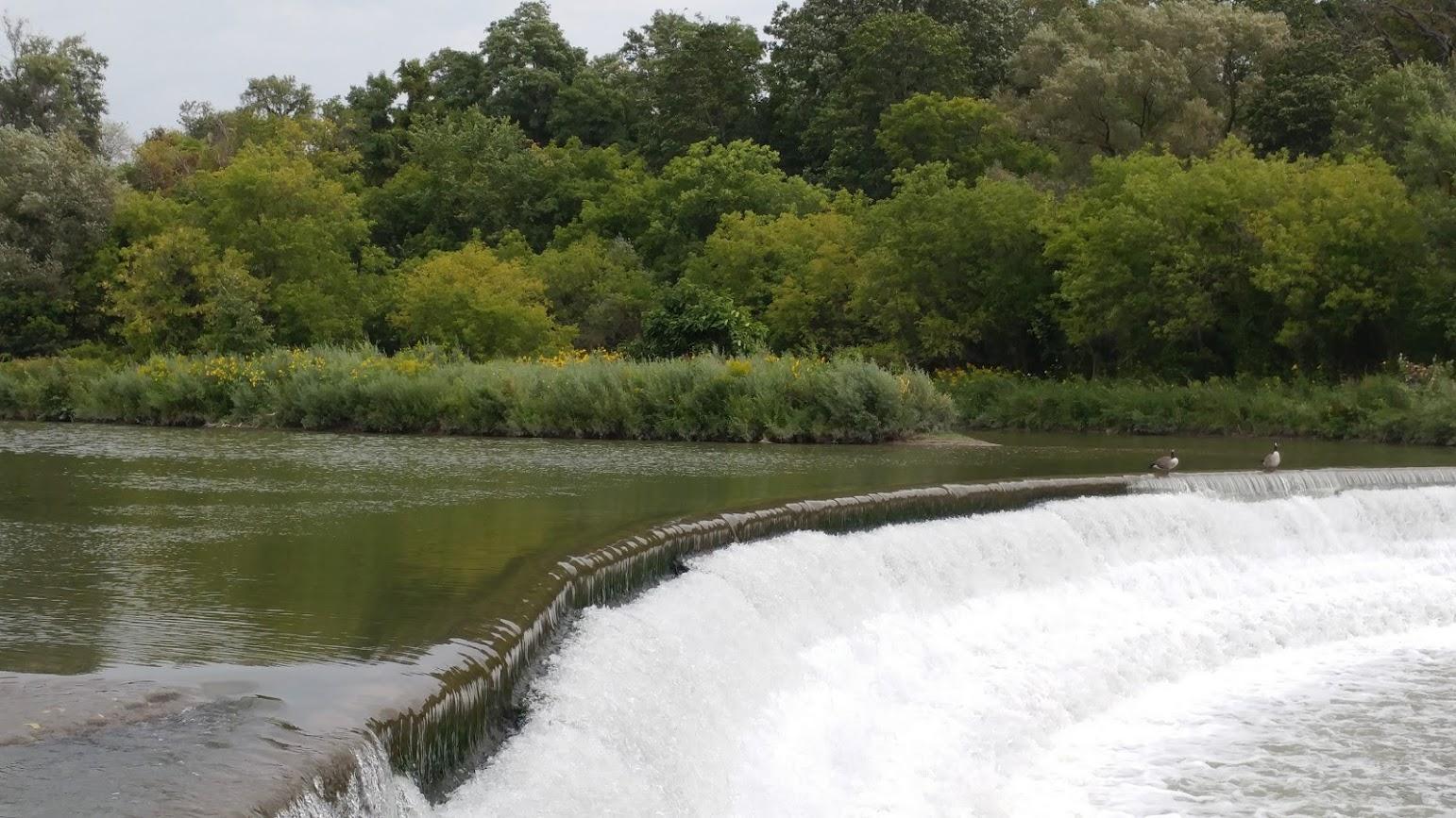 Etienne Brule Park - Salmon Run