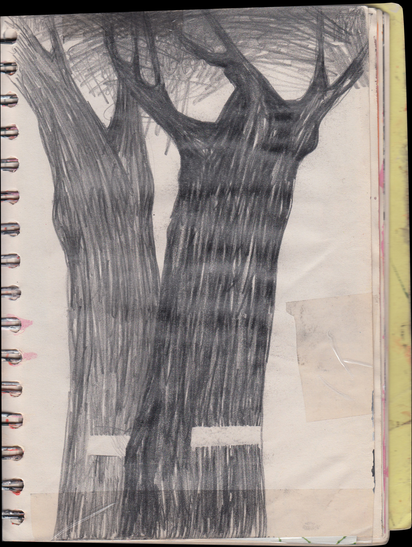 alsace_2008_03