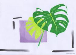 Illustration_1_Monstera_edited