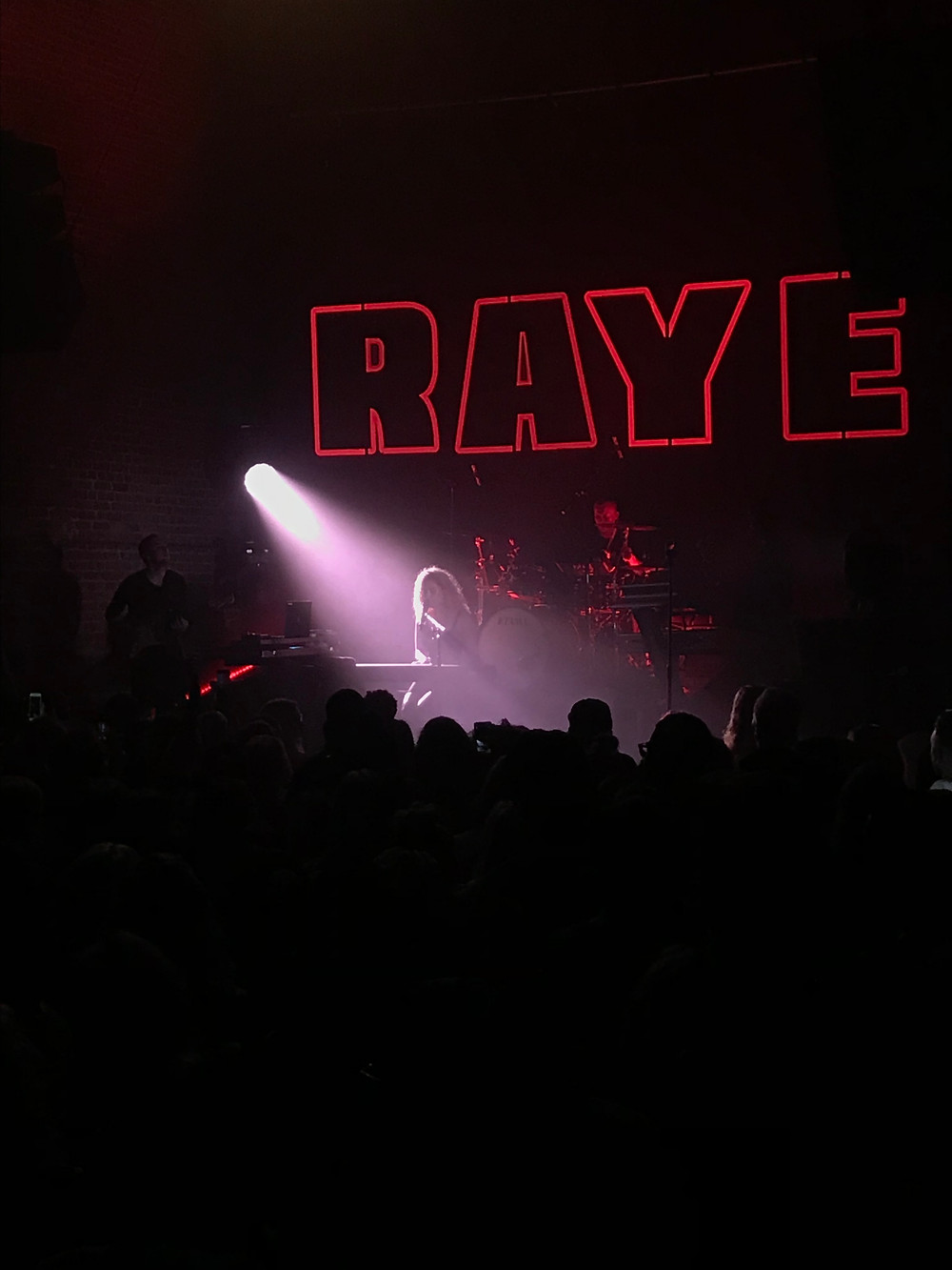 Woman, RAYE singing at concert