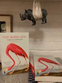 Publication Day for The Rome Zoo