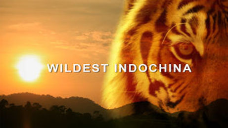 Wildest Indochina Discovery