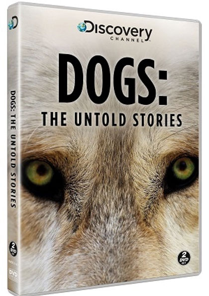 Dogs the Untold Stories Discovery Channel Thailand Filming