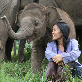 Elephant Nature Park Filming Thailand