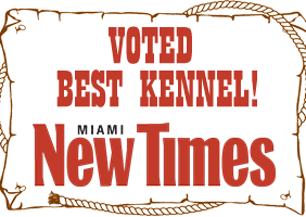 Voted Best Kennel in Miami!
