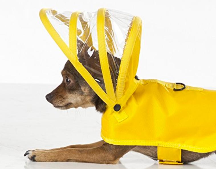 Dog rain coat and hat