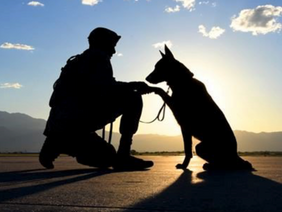 When K-9 and Service Heroes are There for Each Other