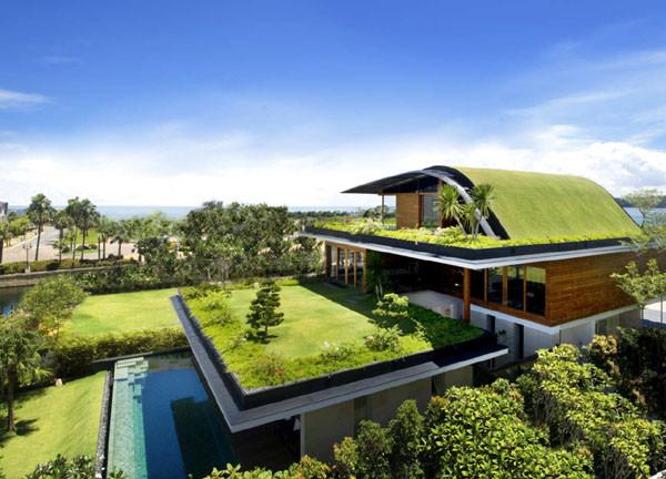 Eco-friendly-Homes.jpg