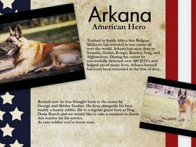 ARKANA: A K-9 WAR HERO