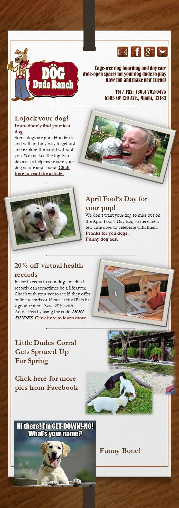 Dog Dude Ranch Miami